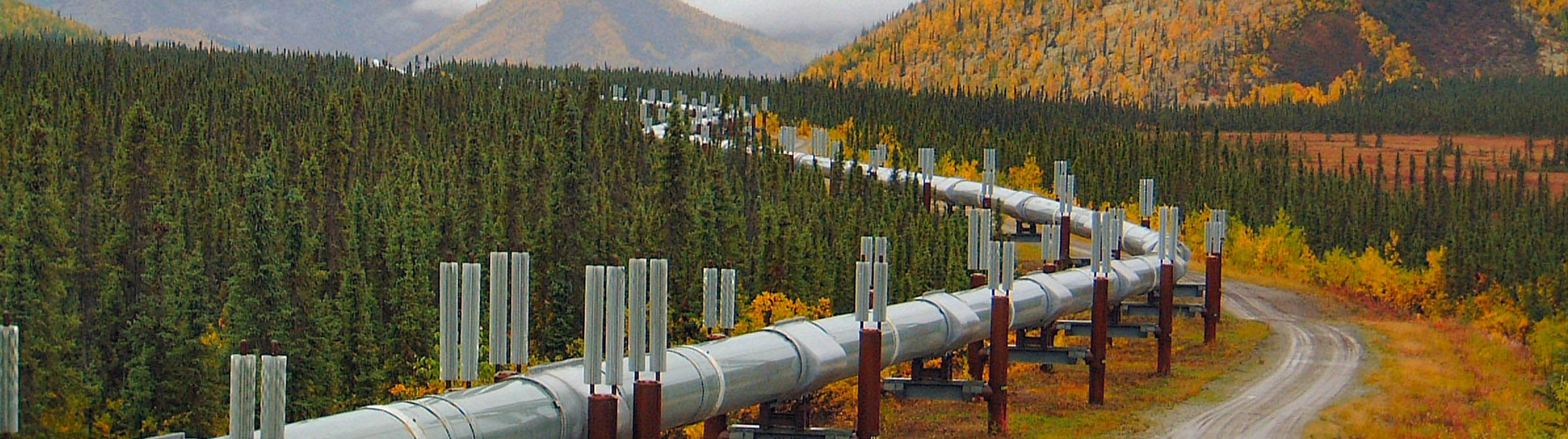 the Alaska Pipeline winding through forests and mountains